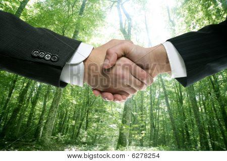Ecological Handshake Businessman In A Forest