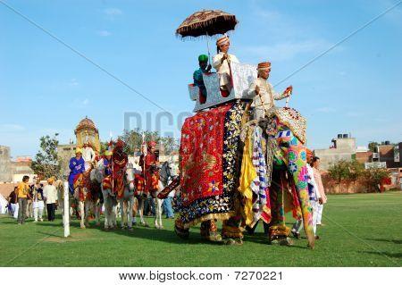 Elephant Festival Rally