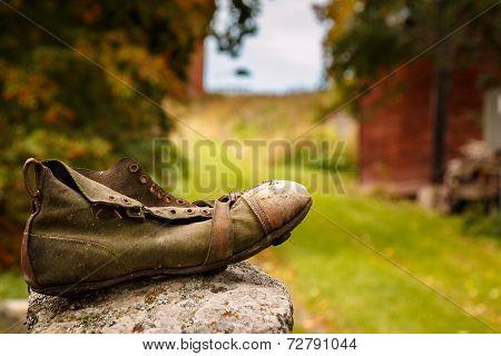 Wanderer shoe in countryside