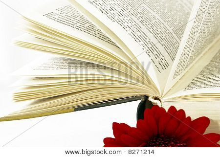 Opened Book With A Red Flower.