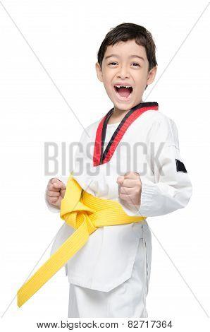 Little Tae Kwon Do Boy Martial Art Yellow Belt