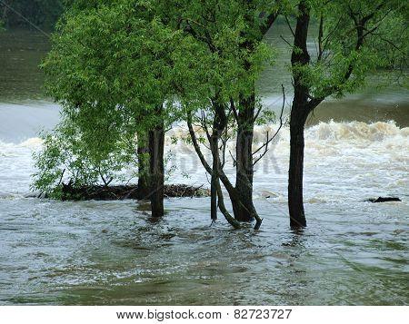 Flood Swollen River