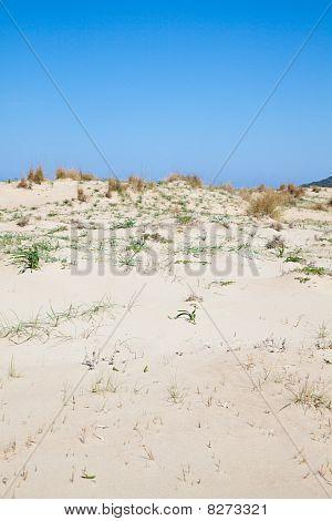 Dunes At Kalogria Beach
