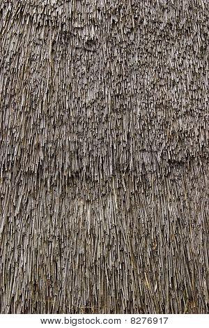 Thatch texture