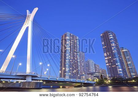 Tokyo city view with high rise building