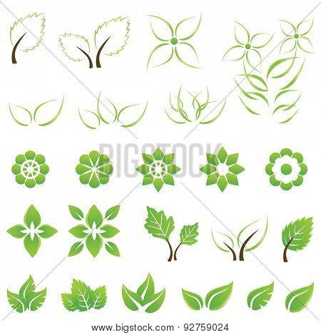 Set of green leaf and flower design elements. This image is a vector illustration.