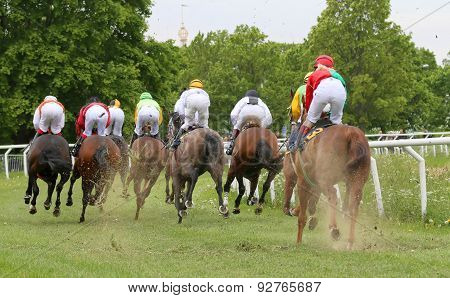 Rear View Of A Group Of Race Horses Before A Curve