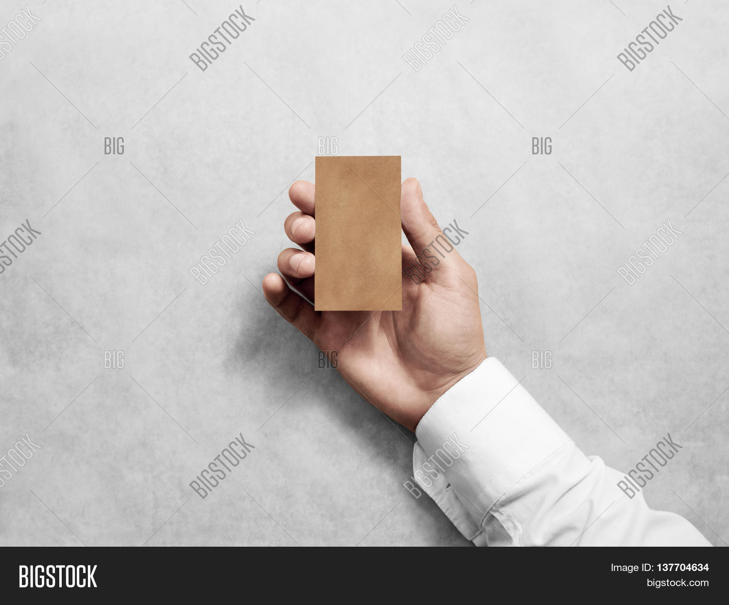 Hand Hold Blank Vertical Craft Image & Photo | Bigstock
