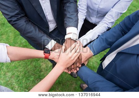 We are the one. Top view of hands of pleasant colleagues keeping them together while standing on the grass