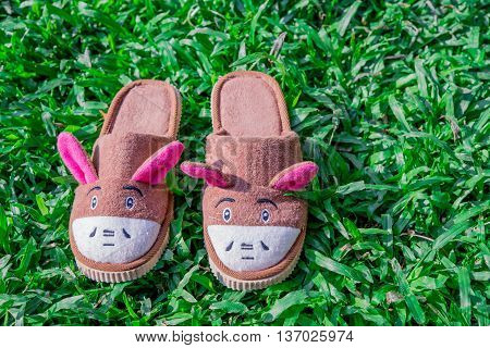 animal house slippers on mown lawn grass in the summer garden