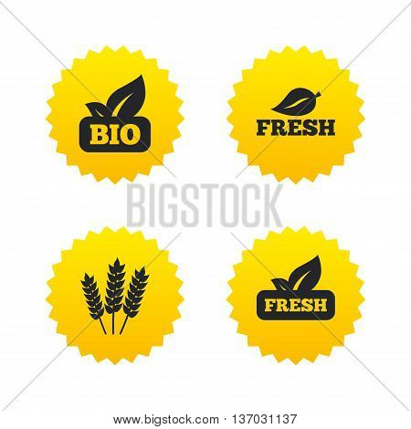 Natural fresh Bio food icons. Gluten free agricultural sign symbol. Yellow stars labels with flat icons. Vector