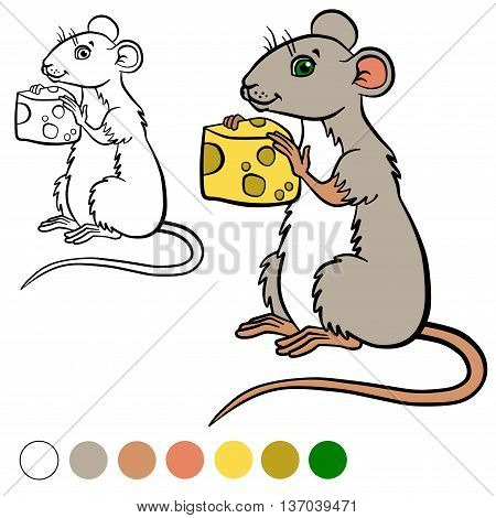 Coloring Page. Color Me: Mouse. Little Cute Mouse Holds A Cheese