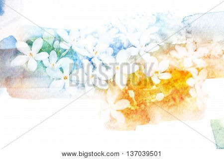 Abstract watercolor illustration of blossom flower. Watercolor painting. Floral watercolor illustration.