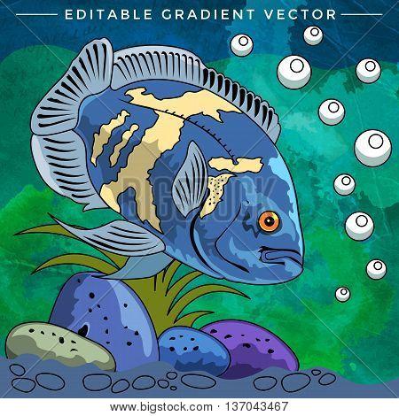 Fish in aquarium. Bright colorful vector illustration.