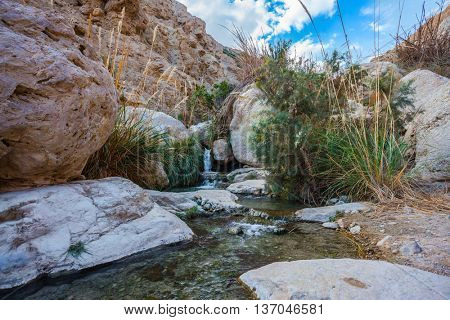 Picturesque rocky gorge with  noisy waterfall and rapid creek. Ein-Gedi - the reserve and national park of Israel