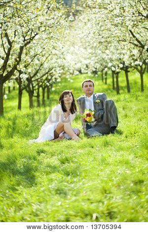 Just Married In A Flowering Garden