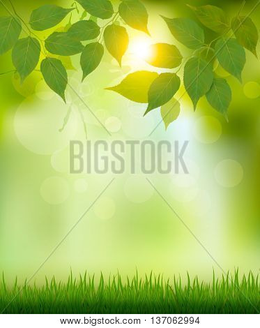 Summer nature background with green leaves. Vector.