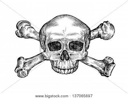 Jolly roger. Hand-drawn human skull and crossbones. Sketch vector illustration