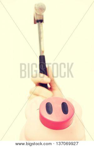 Pink piggy bak and a hammer above it.