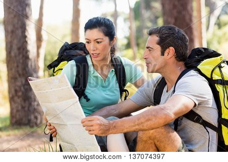 Couple sitting and studying a map on the wood
