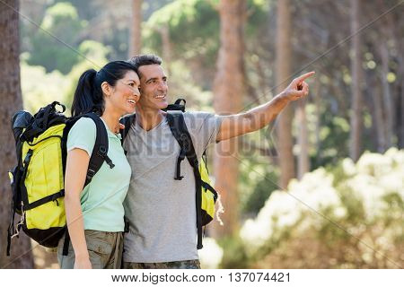 Couple pointing and hiking on the wood