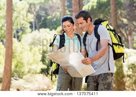 Couple smiling and studying a map on the wood