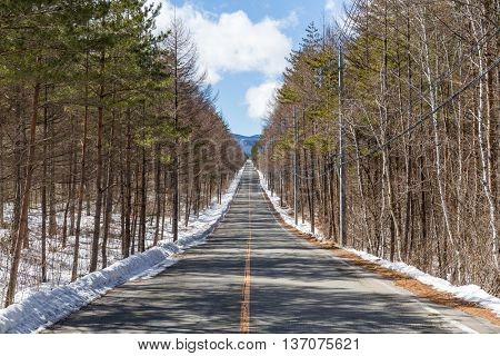 Winter road with clear blue sky