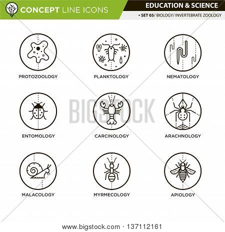 Invertebrate zoology line icons in white isolated background used for school and university education and document decoration, create by vector