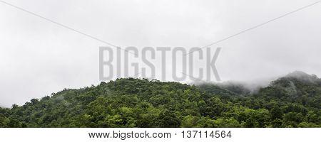 Natural Mountain View in the dark days Daya.