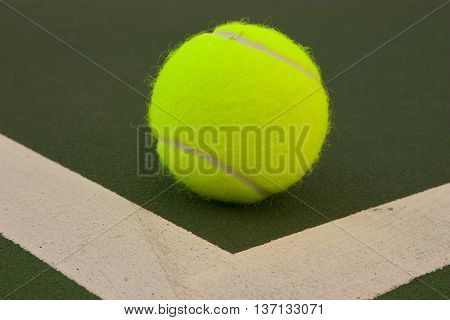 Yellow Tennis Balls - 7