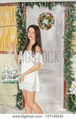 lovely woman with elegant style standing near door of house sham and holding birdcage with Christmas toys, look at us.