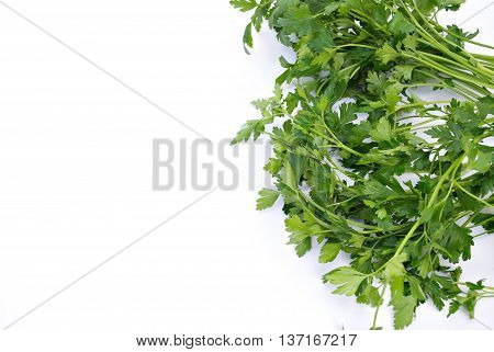 Parsley or garden parsley is a species of Petroselinum in the family Apiaceae native to the central Mediterranean region naturalized elsewhere in Europe and widely cultivated as an herb a spice and a vegetable