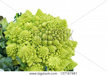 Romanesco broccoli or Roman cauliflower is an edible flower of the species Brassica oleracea and a variant form of cauliflower. First documented in Italy it is light green in color and is a natural approximation of a fractal.