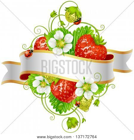 Vector ripe strawberry and ribbon for your text isolated on white background