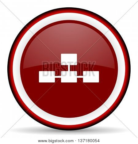 database round glossy icon, modern design web element