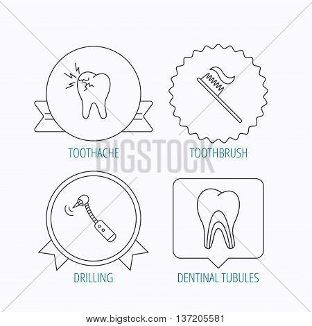 Toothache, drilling tool and toothbrush icons. Dentinal tubules linear sign. Award medal, star label and speech bubble designs. Vector