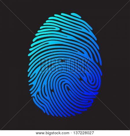 Blue Color fingerprint on black background. Security system illustration.