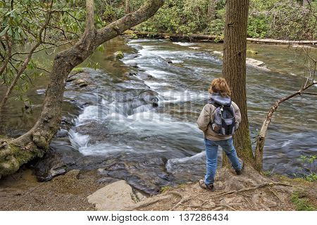 Hiking Along Abrams Creek At Cades Cove In The Great Smoky Mountain National Park In Tennessee
