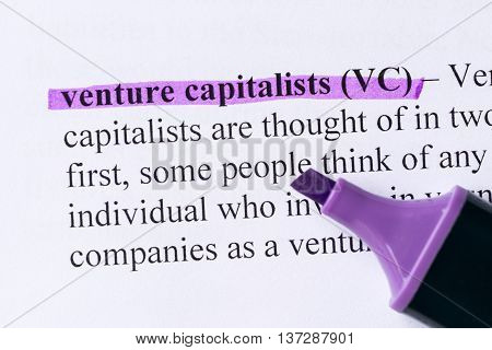 Venture Capitalists Word Highlighted