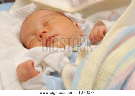 Baby #11