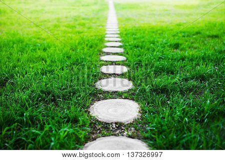 Vertical forest path footway on green grass background
