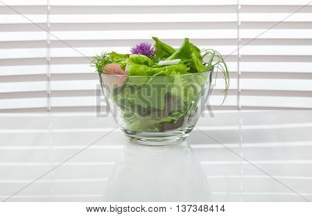 Bowl Of Green Diet Salad In Front Of Window