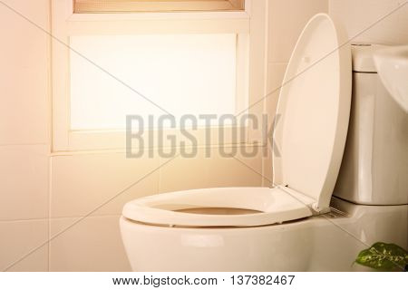 white toilet in modern home, white toilet bowl in cleaning room, flushing liquid in toilet, private toilet in modern room, interior equipment and modern restroom, cleaning toilet. poster
