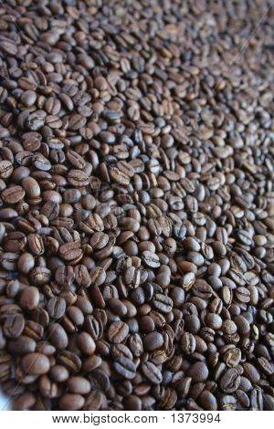 Delicious Roasted Coffee