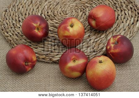seven nectarines on canvas and on the mat