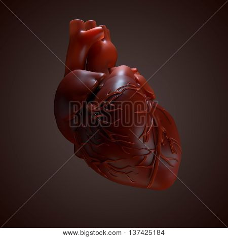 3d rendered Human Heart. Anatomy of Human Heart.