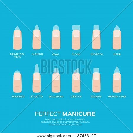 Different nail shapes. Woman fingers. Fingernails fashion trends. Vector design illustration