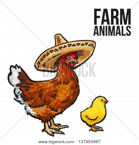 ginger chicken with chick and sombreros, sketch hand-drawn illustration isolated on a white background. poultry farm with chicken. chicken family Mother and child. Mexican food design, sombrero