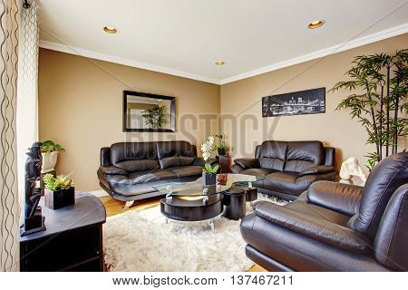 Cozy and luxury living room with black leather sofa set and modern coffee table. Also lots of flower pots and decorative tree pot.
