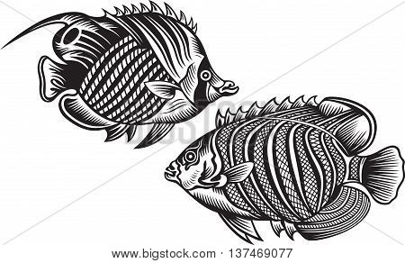 Illustration of Decorative fish, black and white colors